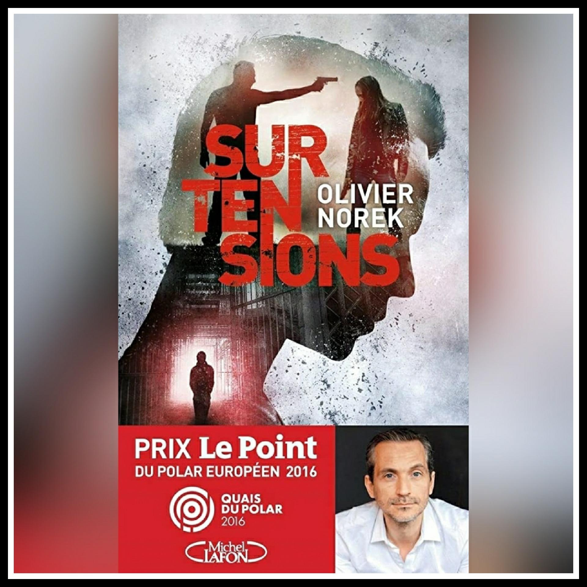 Read more about the article Chroniques 2016  Surtensions d'Olivier Norek