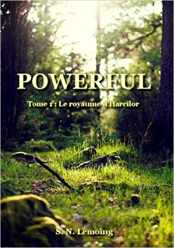Read more about the article Chroniques 2016  Powerful (Tome 1 : Le Royaume d'Harcilor) de S.N Lemoing