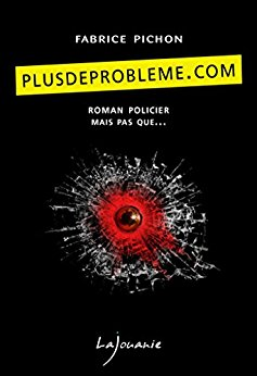 Read more about the article Chroniques 2017  PlusDeProblème.com de Fabrice Pichon