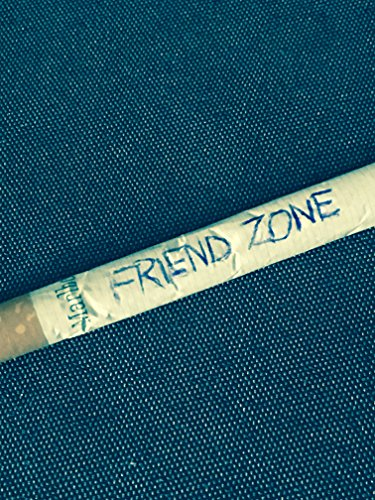 Chroniques 2017  Friend Zone de Mickaël Parisi