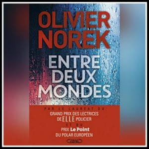 Read more about the article Chroniques 2017  Entre deux mondes d'Olivier Norek