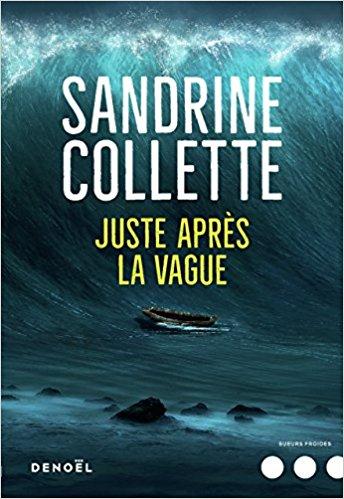 Read more about the article Chroniques 2018  Juste après la vague de Sandrine Collette