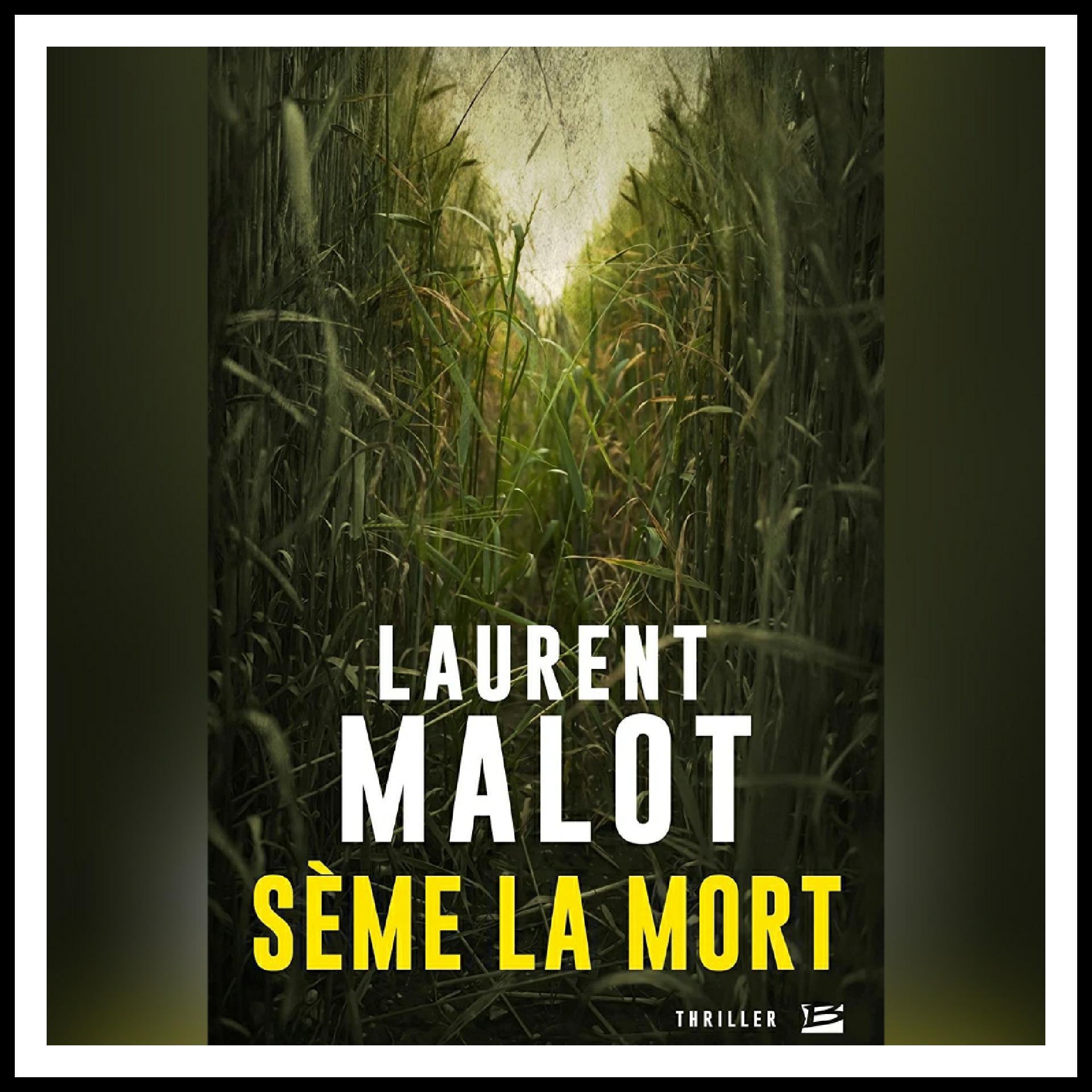 Read more about the article Chroniques 2018 \ Sème la mort de Laurent Malot