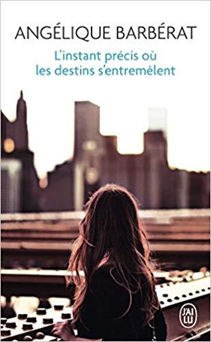 Read more about the article Chroniques 2018  L'instant précis où les destins s'entremêlent d'Angélique Barbérat