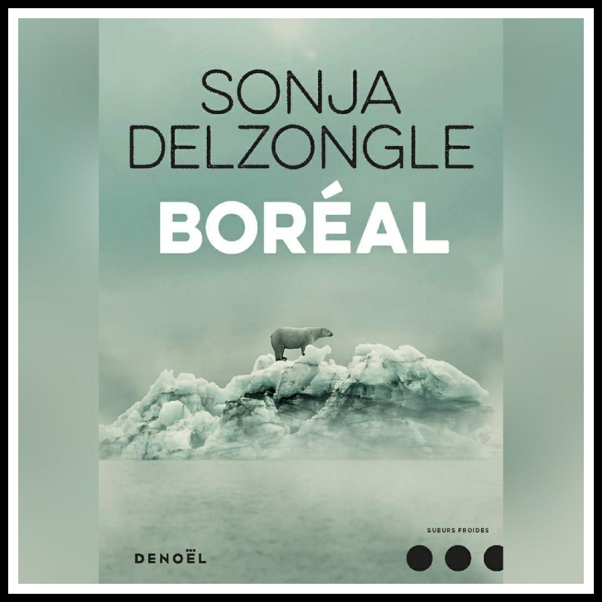 Read more about the article Chroniques 2018 \ Boréal de Sonja Delzongle