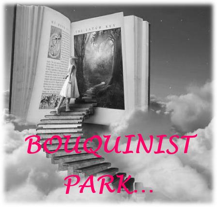Bouquinist Park  Du côté de chez Roseline : Le Livre des Âmes, Tome 1 – Bethany de Sylvie Ginestet
