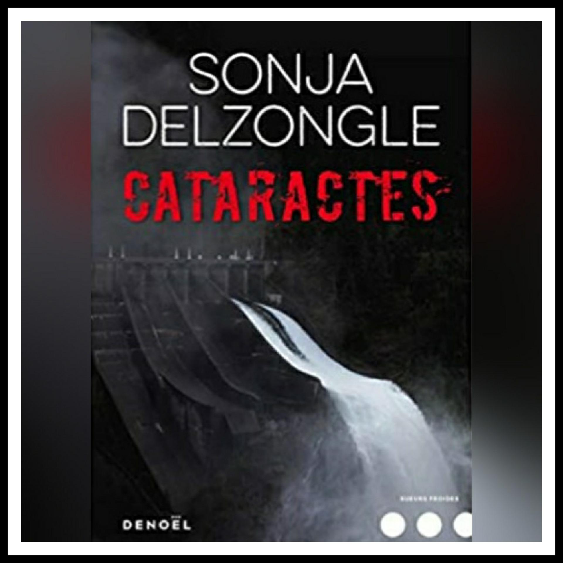 Read more about the article Chroniques 2019 \ Cataractes de Sonja Delzongle