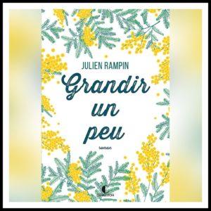 Read more about the article Chroniques 2019  Grandir un peu de Julien Rampin