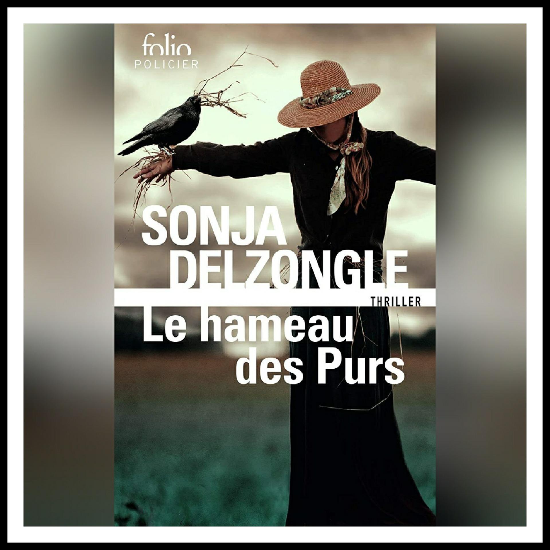 Read more about the article Chroniques 2019 \ Le Hameau des Purs de Sonja Delzongle