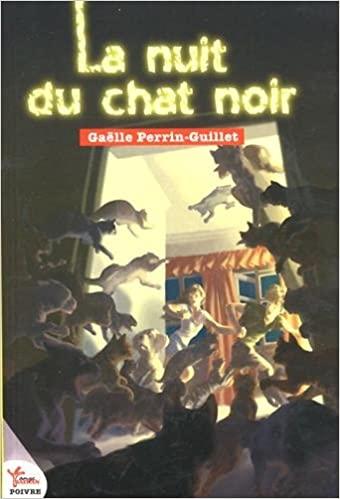 Chroniques 2020  La nuit du chat noir de Gaëlle Perrin-Guillet