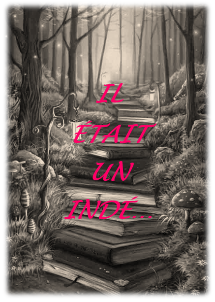Read more about the article Il était un Indé… Et c'est Gurvan Even !