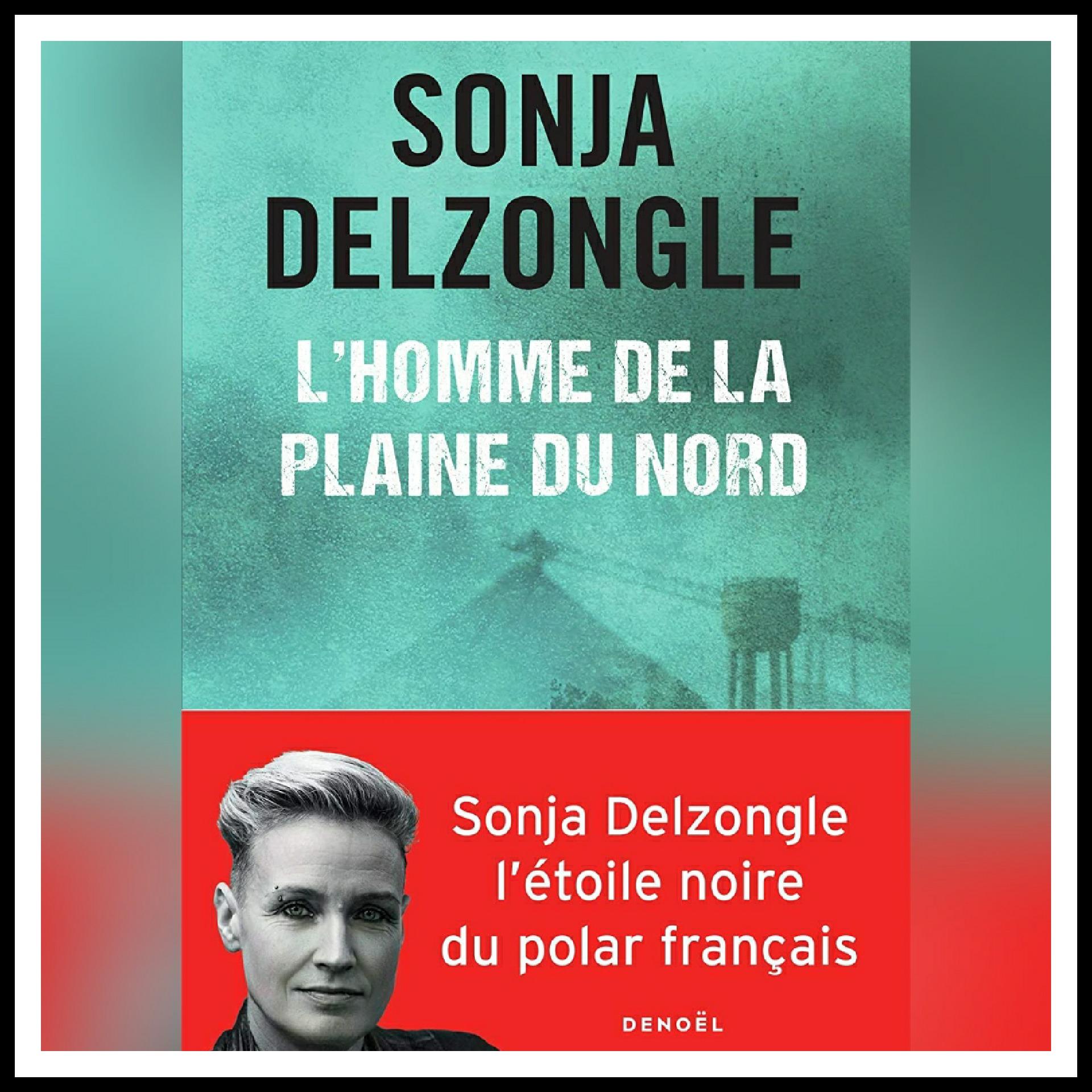 Read more about the article Chroniques 2020 \ L'Homme de la plaine du Nord de Sonja Delzongle