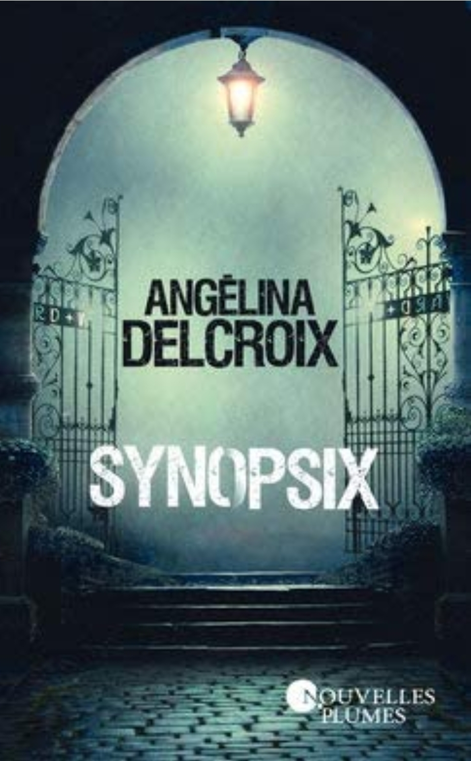 Chroniques 2020  Synopsix d'Angelina Delcroix