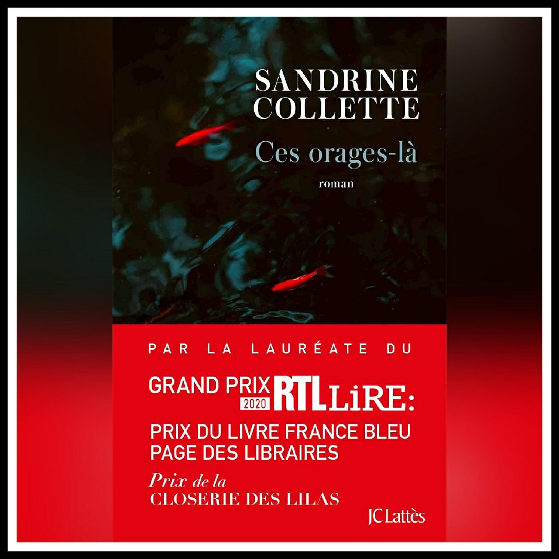 Chroniques 2021 \ Ces orages-là de Sandrine Collette