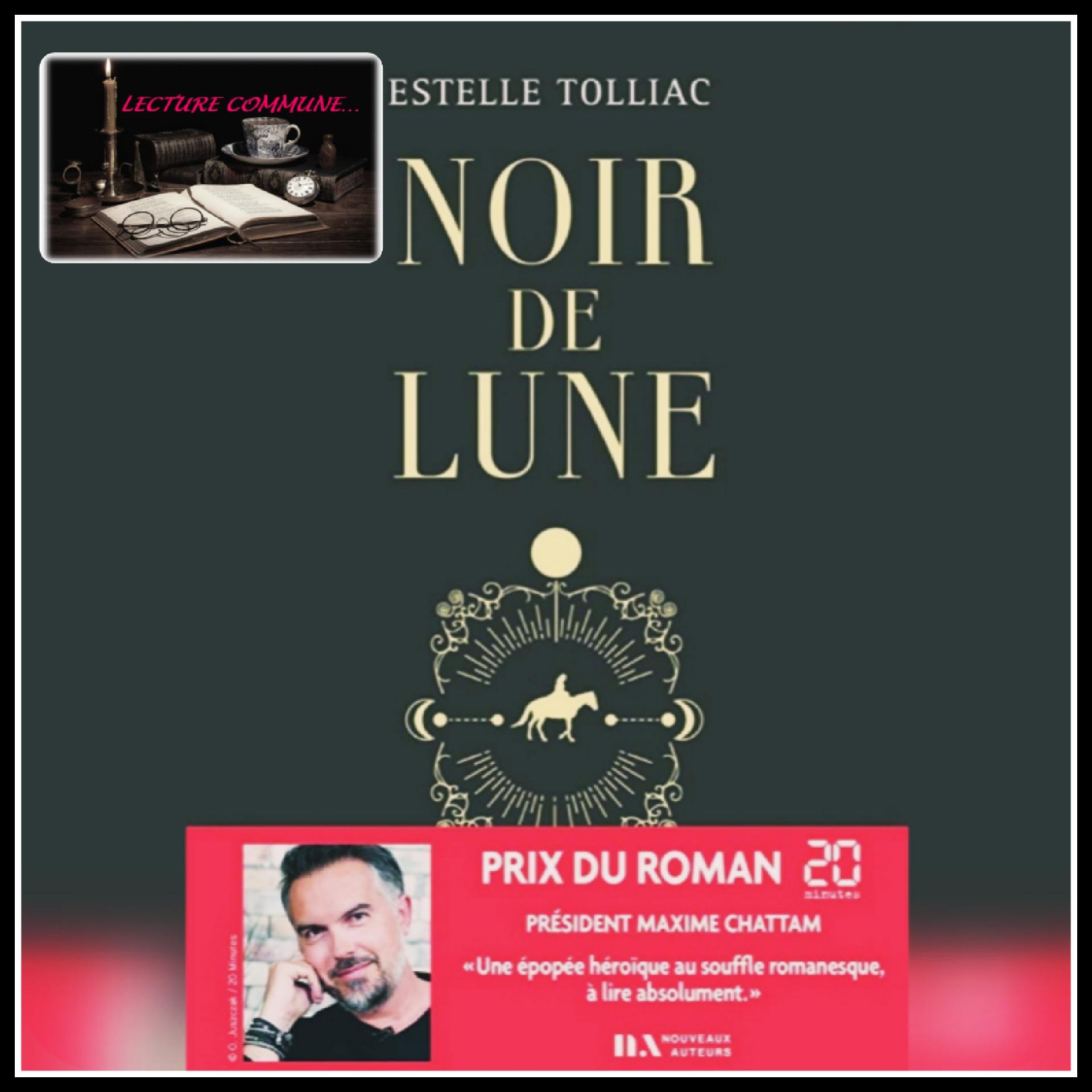 Read more about the article Lecture commune \ Noir de Lune d'Estelle Tolliac