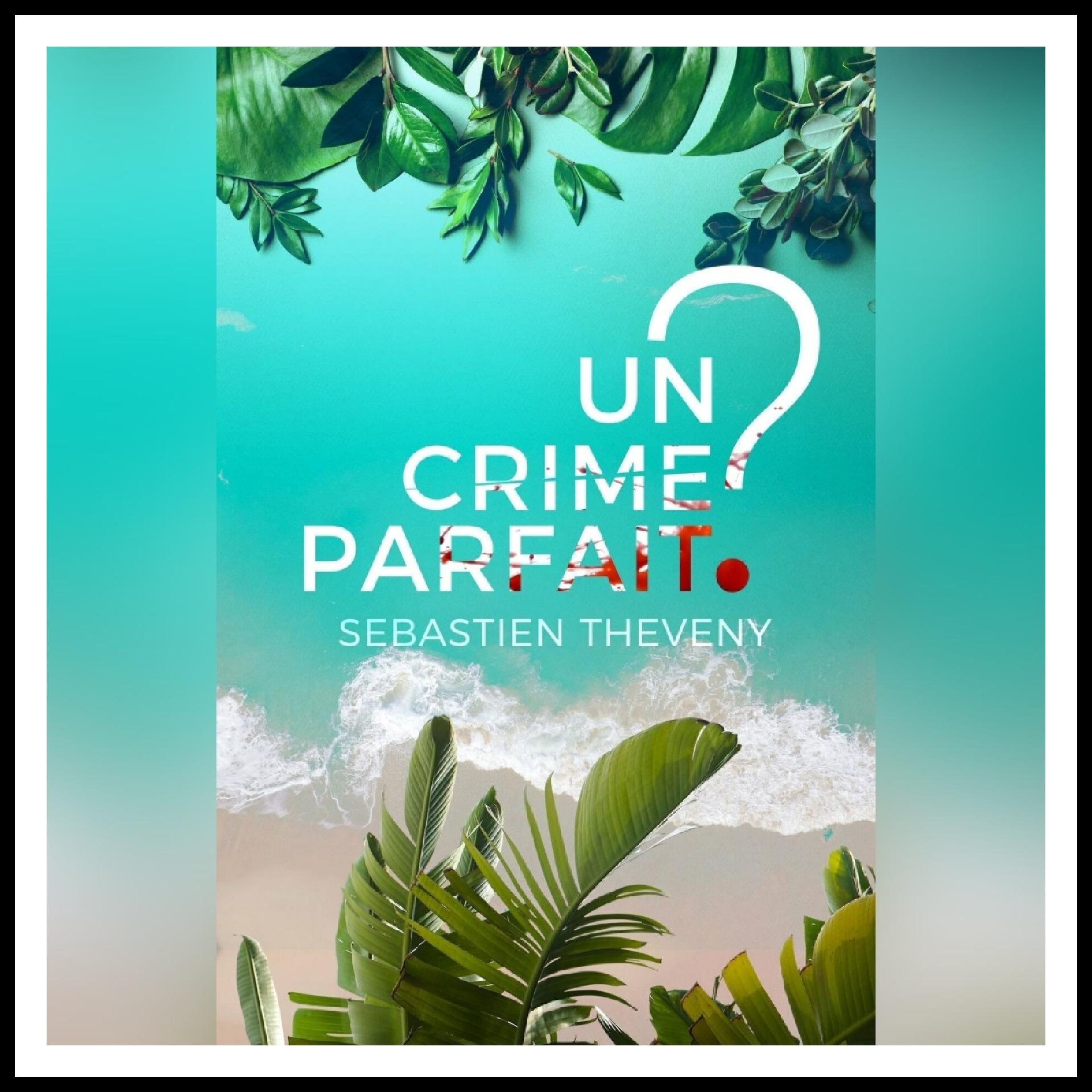 Chroniques 2021 \ Un crime parfait ? de Sébastien Theveny