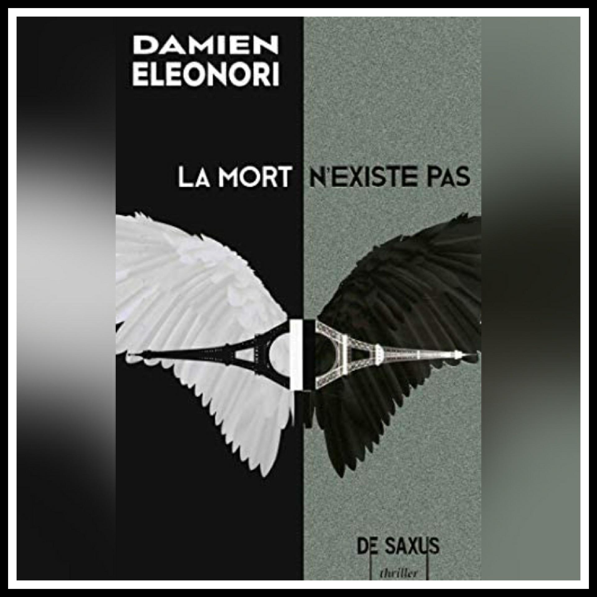 Chroniques 2019 \ La mort n'existe pas de Damien Eléonori