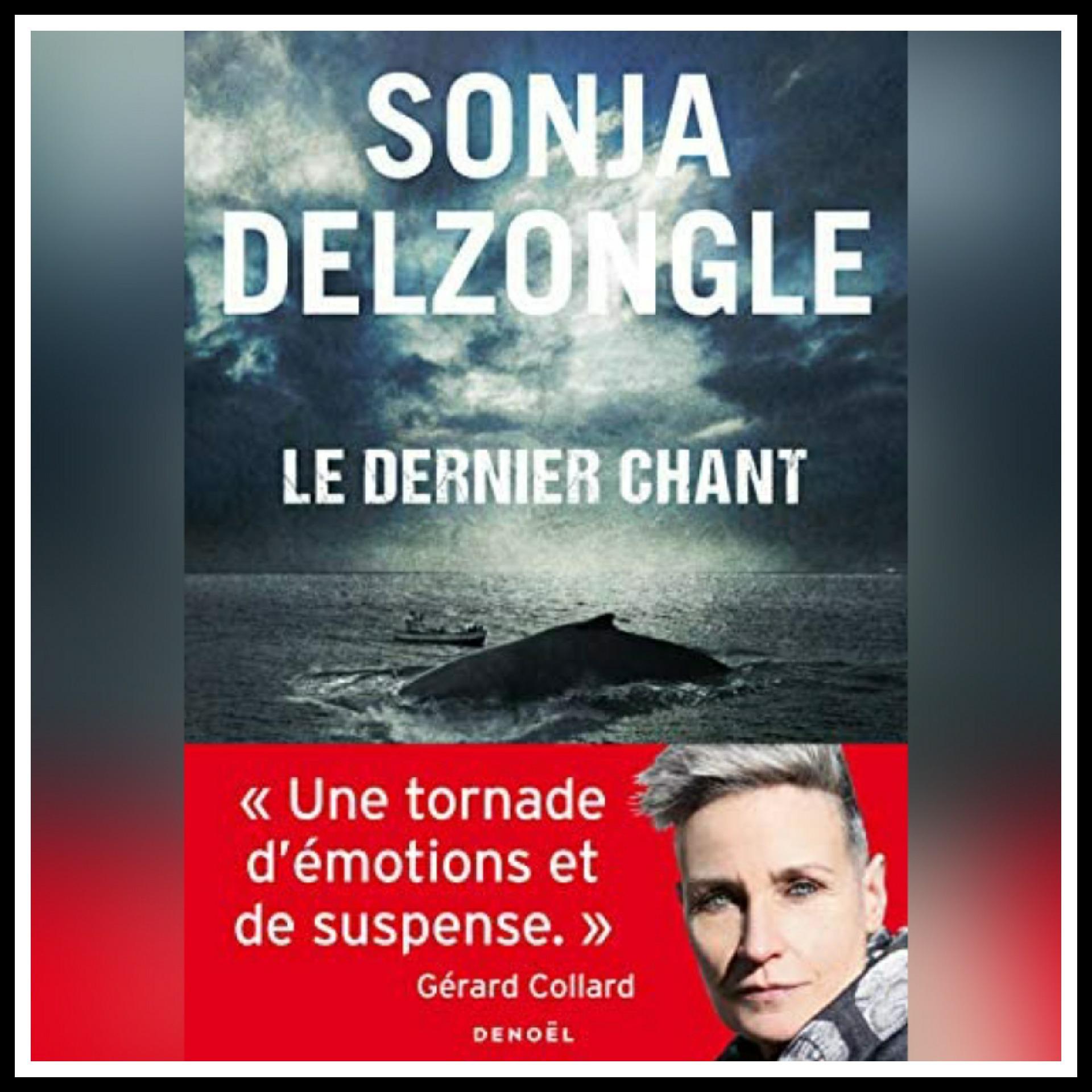 Read more about the article Chroniques 2021 \ Le dernier chant de Sonja Delzongle