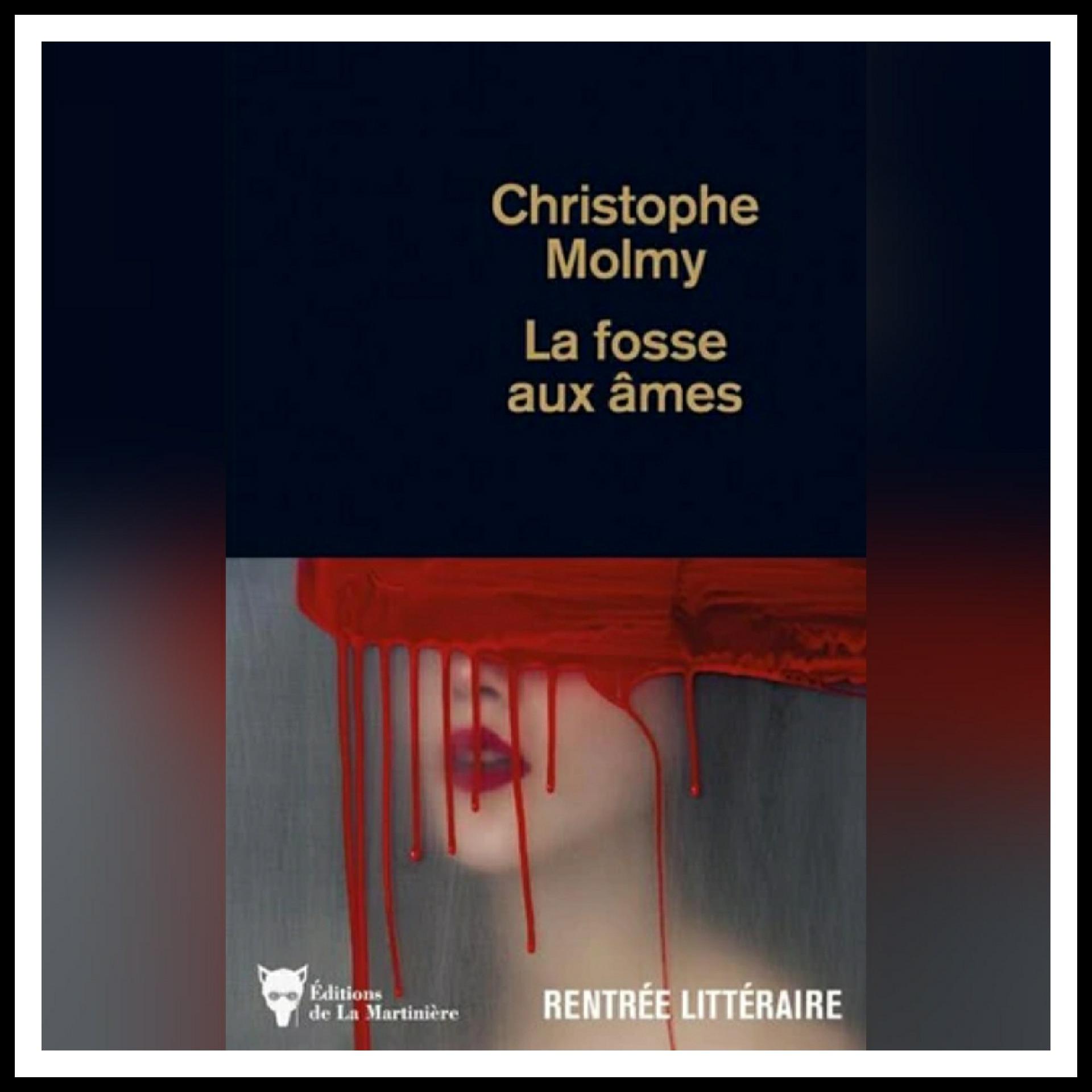 Read more about the article Chroniques 2021 \ La fosse aux âmes de Christophe Molmy