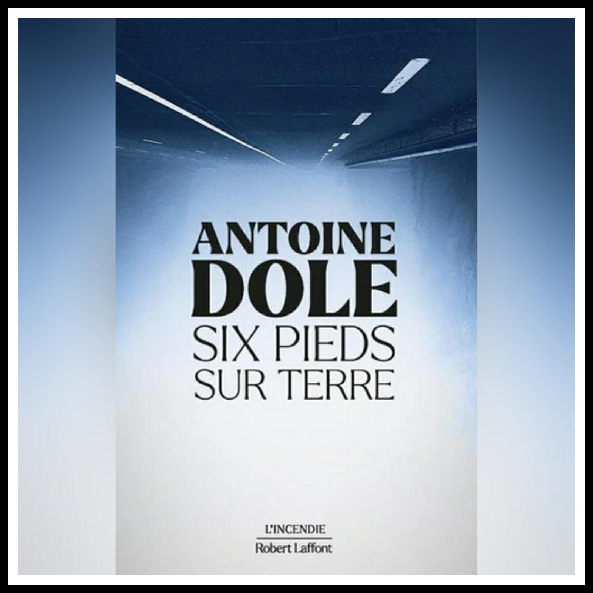 Read more about the article Chroniques 2021 \ Six pieds sur terre d'Antoine Dole