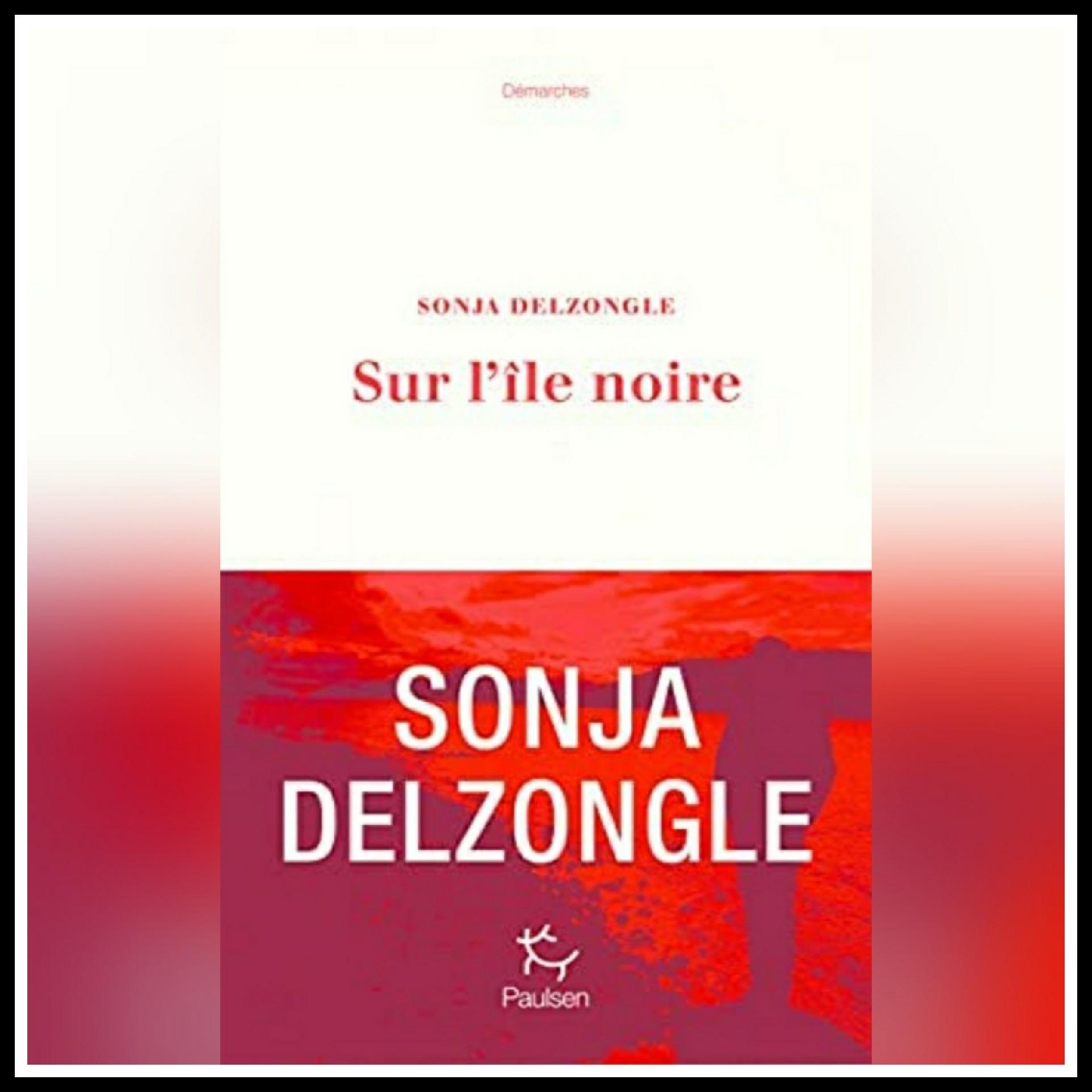 Read more about the article Chroniques 2021 \ Sur l'île noire de Sonja Delzongle