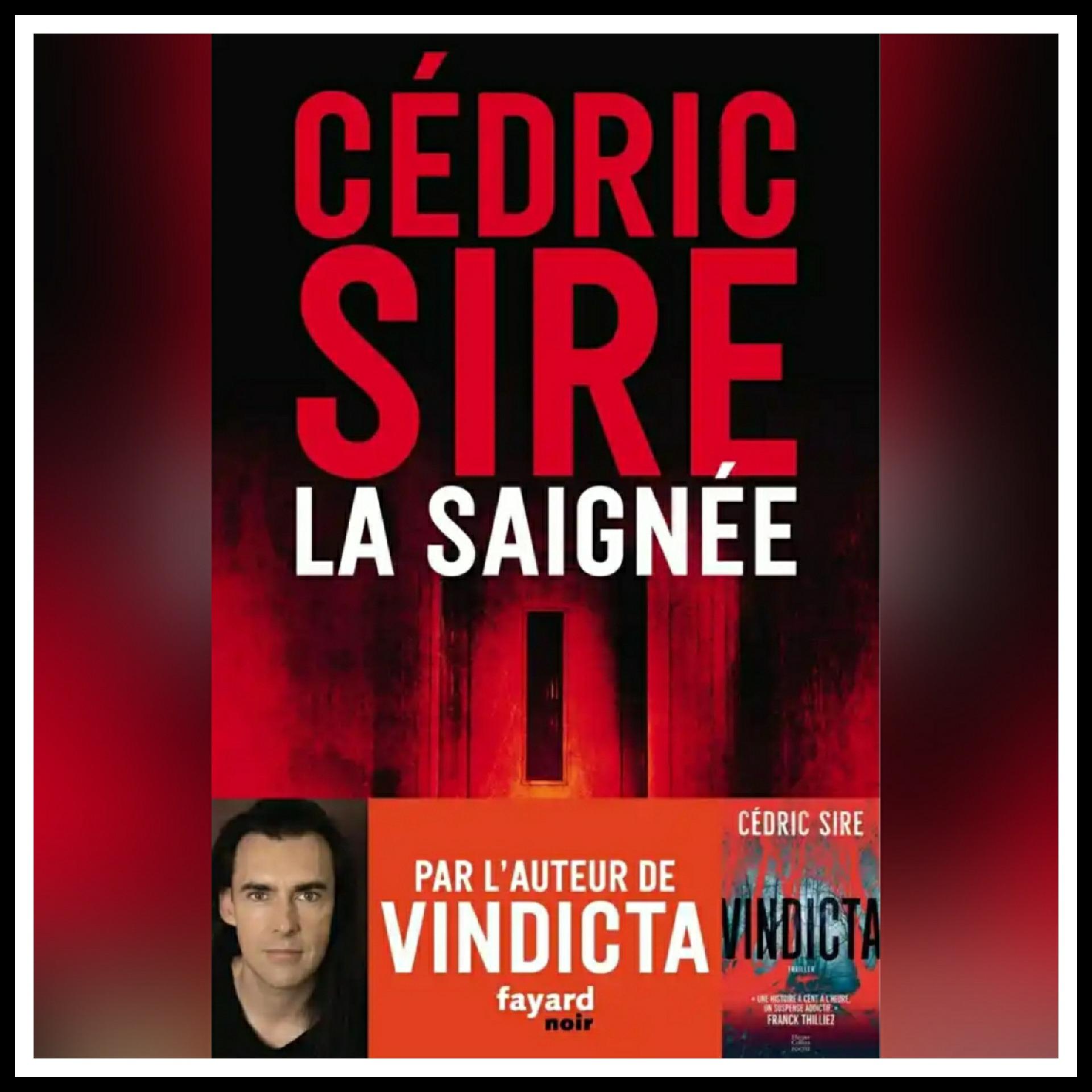 Read more about the article Chroniques 2021 \ La Saignée de Cédric Sire
